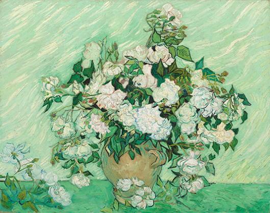 g26白い薔薇.jpg